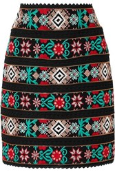 Costarellos Zip Detailed Embroidered Voile And Crocheted Lace Mini Skirt Black