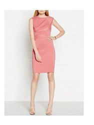 Reiss Danielle Bodycon Seam Feature Dress Pink Red