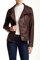 Soia And Kyo Asymmetrical Moto Leather Jacket Brown