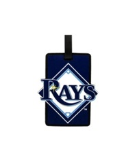 Aminco Tampa Bay Rays Soft Bag Tag Team Color