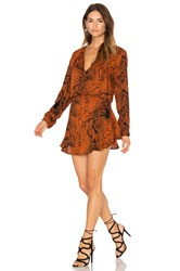 Karina Grimaldi Pilar Print Mini Dress Rust