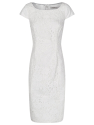 Kaliko Lace Shift Dress White
