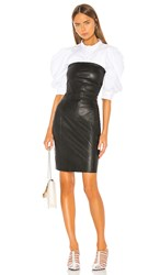 Lamarque Selima Leather Dress In Black.