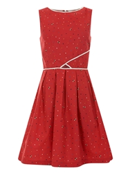 Trollied Dolly Catch A Glimpse Dress Red