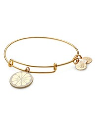 Alex And Ani Zest For Life Charm Bangle Gold