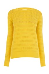 Warehouse Stitchy Open Back Jumper Yellow