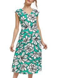 Jaeger Floral Fit And Flare Dress Green