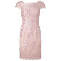 Adrianna Papell Embroidered Mesh Party Dress Blush