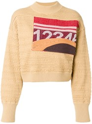 3.1 Phillip Lim Graphic Faux Plaited Cropped Pullover Brown