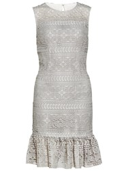 Gina Bacconi Antique Foiled Lace Panelled Embroidery Dress Taupe