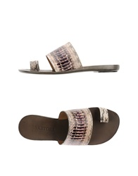Sartore Thong Sandals Dove Grey