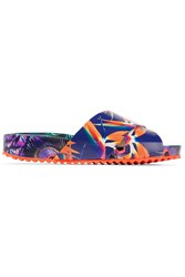 Sophia Webster Phoebe Printed Leather Slides Royal Blue