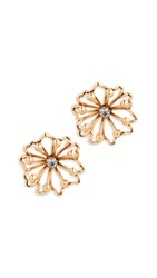 Elizabeth Cole Nickie Earrings Golden Glow