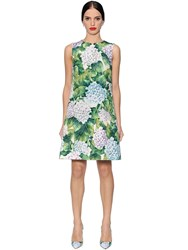 Dolce And Gabbana Hydrangea Cotton Blend Brocade Dress