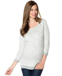 A Pea In The Pod Maternity Raglan Sleeve Animal Print Sweater Grey Ivory