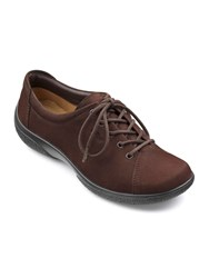 Hotter Dew Original Extra Wide Shoes Chocolate