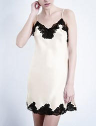 Nk Imode Morgan Silk Satin And Lace Chemise Champagne Black Lace