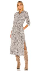 1.State 1. State Patch Pocket Snake Print Maxi Dress In Gray. Feather Grey