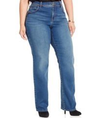 Styleandco. Style And Co. Plus Size Embroidered Straight Leg Jeans Quincy
