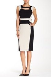 Single Dress Colorblock Sheath Dress Multi