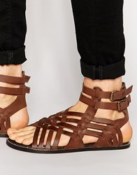 Asos Gladiator Sandals In Brown Leather Brown