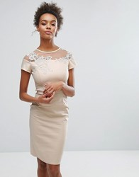 Paper Dolls Nude Floral Mesh Insert Dress Nude Pink