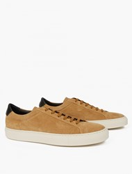 Common Projects Tan Suede Achilles Retro Low Sneakers Brown