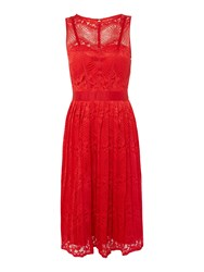 Little Mistress Fit And Flare Lace Midi Dress Red