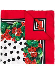 Dolce And Gabbana Floral Print Scarf Red