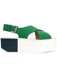 Flamingos Colour Block Sandals Green