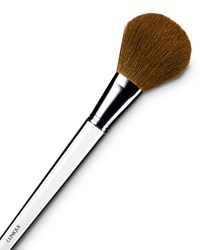 Powder Brush Clinique