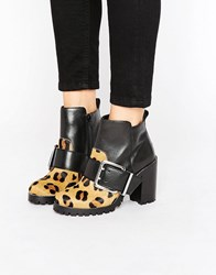 Office Apex Buckle Leopard Chunky Heeled Ankle Boots Leopard Black Leathe