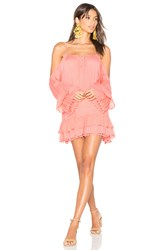 Lovers Friends Tropical Oasis Dress Pink