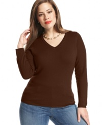 Charter Club Plus Size Cashmere V Neck Sweater In 16 Colors Only At Macy's Mahagony
