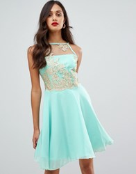 Ax Paris Tulle Skater Dress With Embellished Detail Green