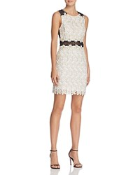 Aqua Sheer Panel Lace Dress White Gold Black
