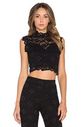 Nightcap Dixie Lace Crop Top Black