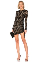 Bailey 44 Disinformation Lace Dress Black