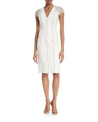 Catherine Deane Kaylor Striped Ponte Lace Sleeve Cocktail Dress Oyster Almond