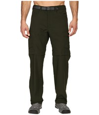 The North Face Paramount Peak Ii Convertible Pant Rosin Green Men's Casual Pants