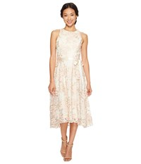 Tahari By Arthur S. Levine Petite Tea Length Embroidered Dress Champagne Petal Women's Dress White