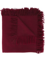 Isabel Marant 'Zila' Tassel Scarf Pink And Purple