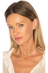 Ettika Disc Chain Choker Metallic Gold