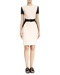 Stella Mccartney Colorblock Mesh Inset Sheath Dress Rose Black
