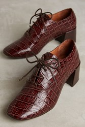 Anthropologie Jeffrey Campbell Benecia Oxfords Brown