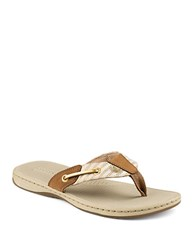 Sperry Seafish Mariner Leather Thong Sandals Cognac