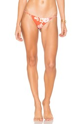 Stone Fox Swim Puka Bikini Bottom Red