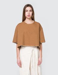 Ashley Rowe Tee Shirt In Tan