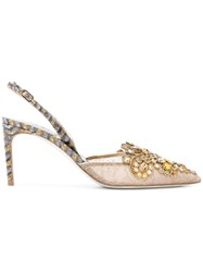 Rene Caovilla Lace And Ayer Pumps Leather Polyester Ayers Snakeskin Nude Neutrals