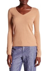 In Cashmere V Neck Sweater Brown